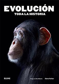 EVOLUCION TODA LA HISTORIA