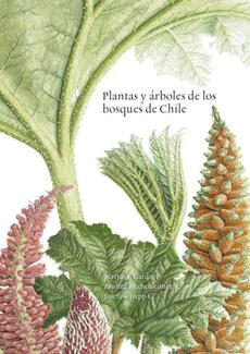 PLANTAS Y ARBOLES DE LOS BOSQUES DE CHILE