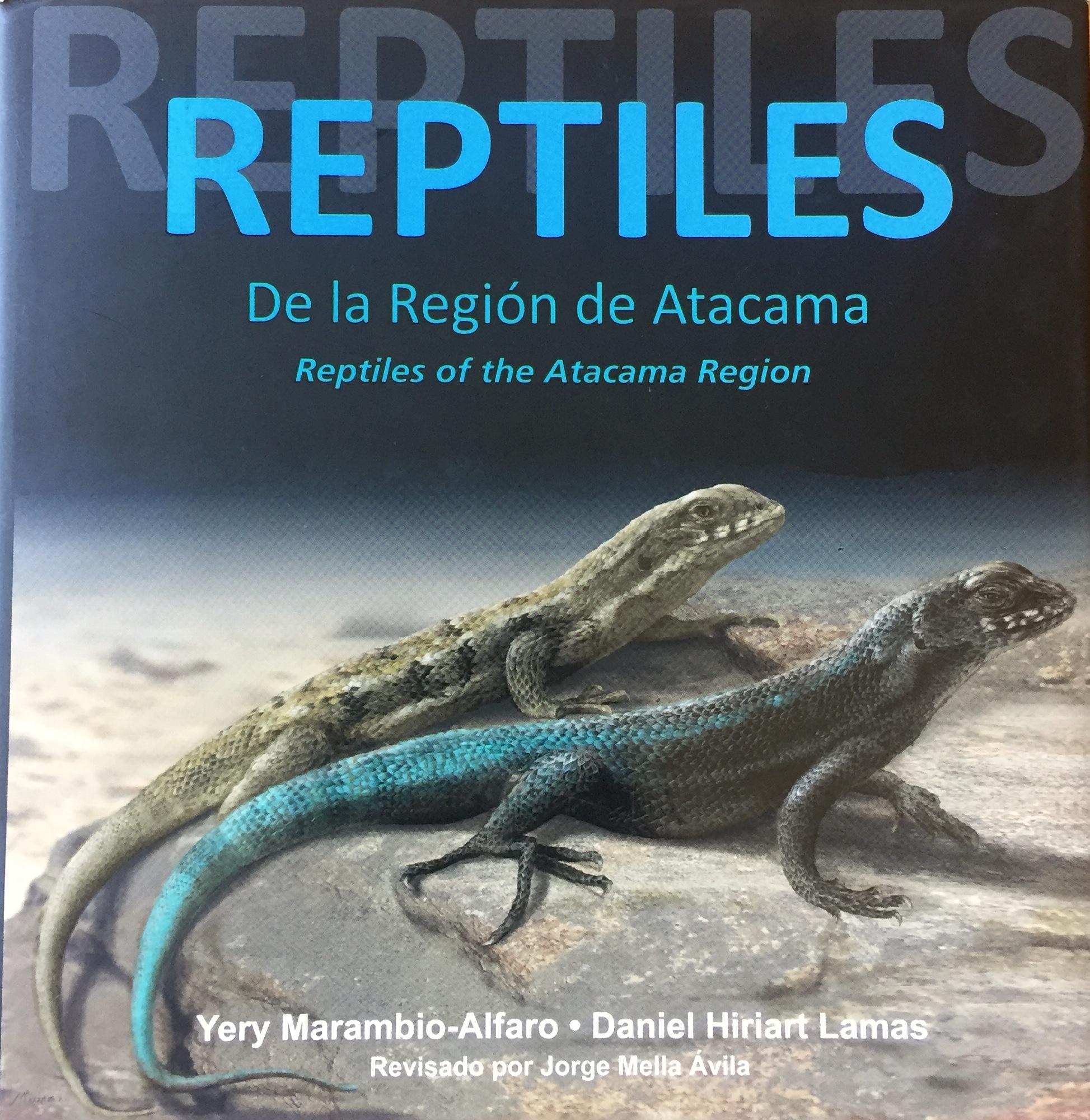 REPTILES DE LA REGION DE ATACAMA