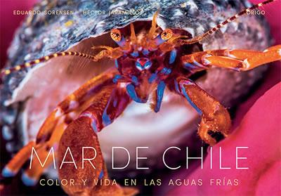 MAR DE CHILE