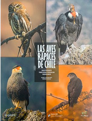 LAS AVES RAPACES DE CHILE