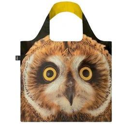 BOLSA SHORT EARED OWL NATGEO