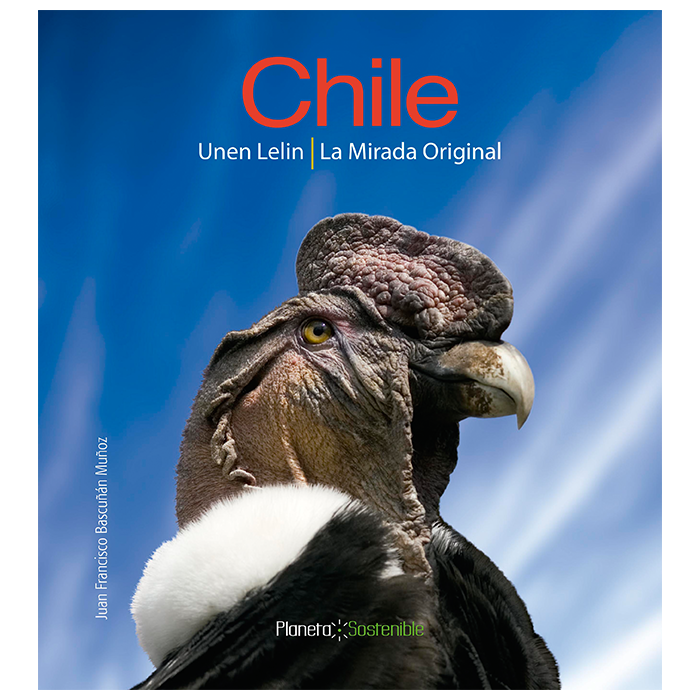 CHILE UNEN LELIN LA MIRADA ORIGINAL