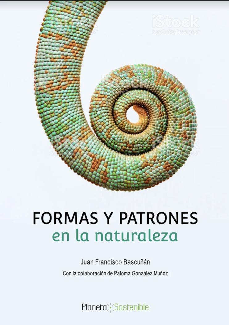 FORMAS Y PATRONES EN LA NATURALEZA